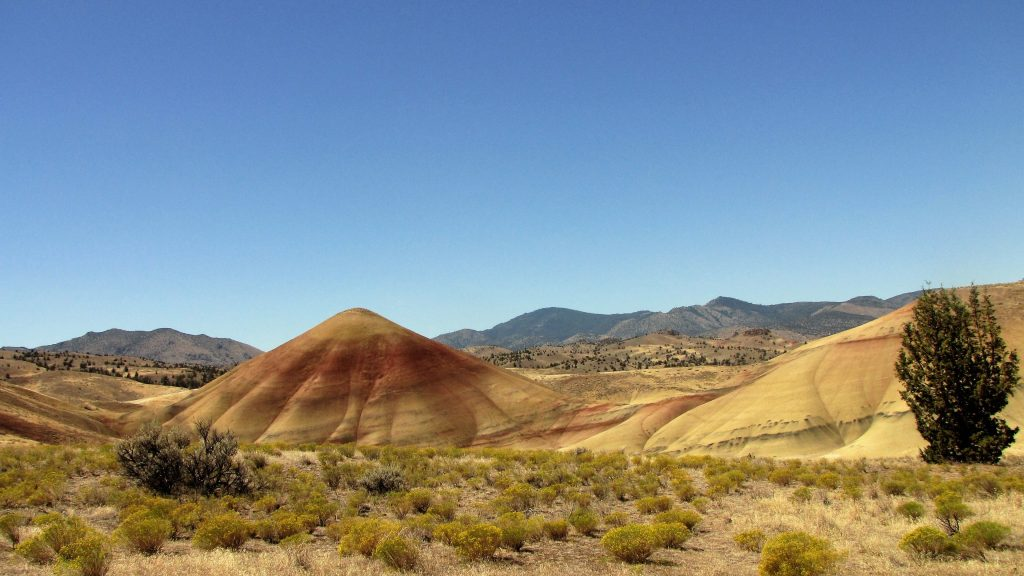 sentiero tra le painted hills