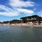 spiaggia della sterpaia